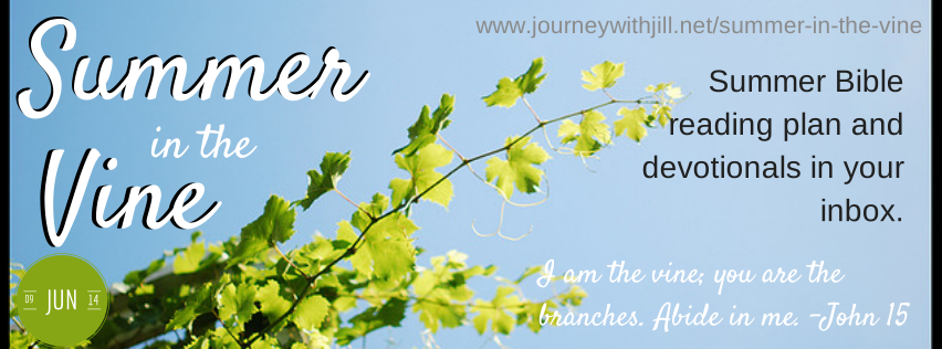 http://journeywithjill.net/online-bible-studies/summer-in-the-vine/