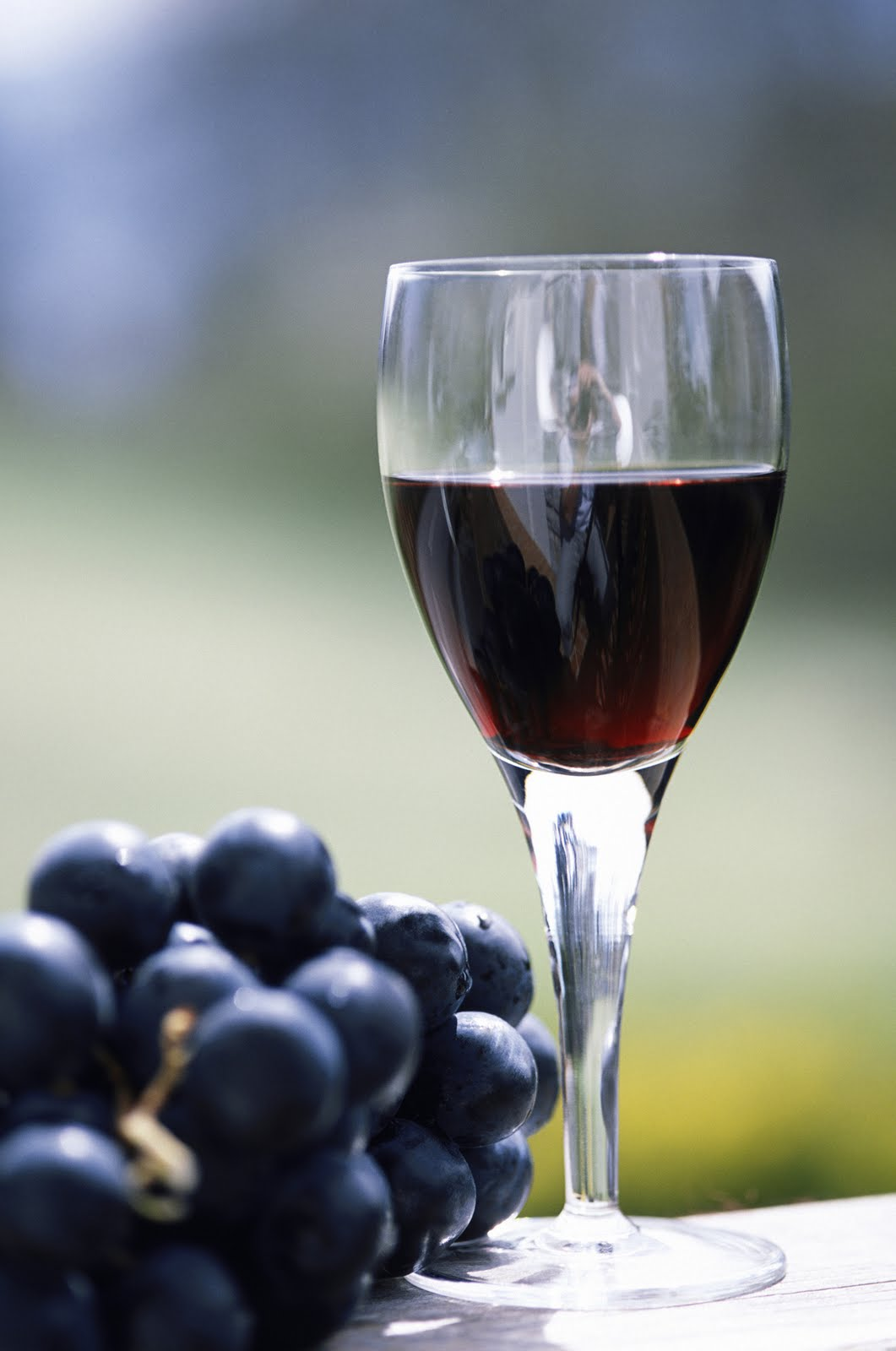 grapes wine hd wallpapers - photo #41