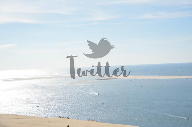 Les réseaux sociaux et moi: twitter