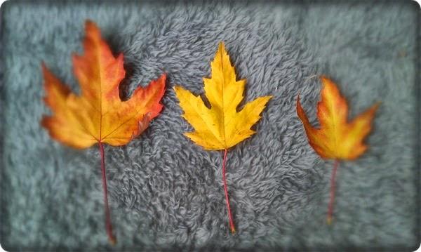 Za oknem jesień ...