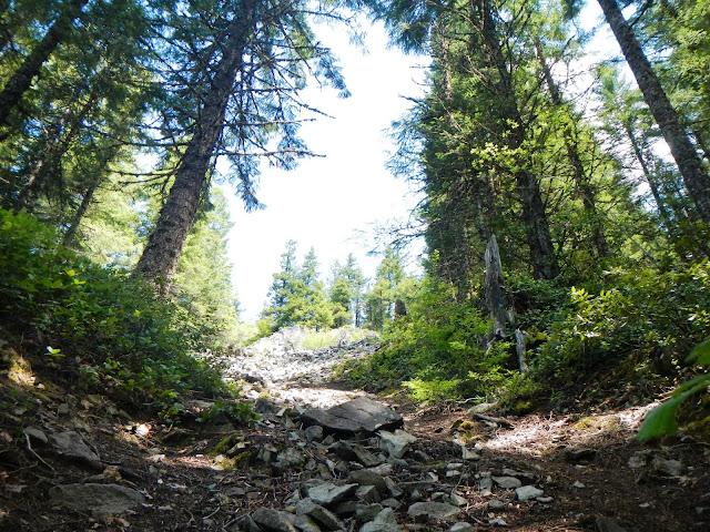 laurel hill along the oregon trail in oregon