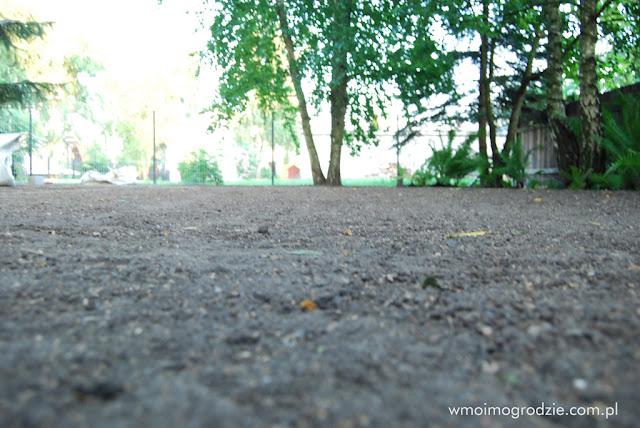 zakładanie trawnikow grojec warszawa wilanow piaseczno tarczyn nadarzyn warka