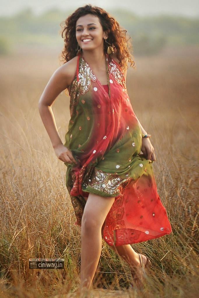 Run Raja Run Heroine Seerat Kapoor Stills