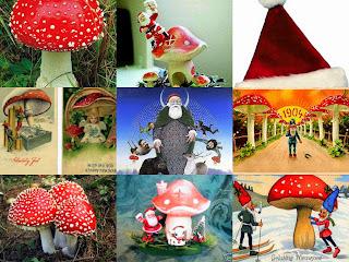 Santa Claus and the Magic Mushrooms 2010-12-24