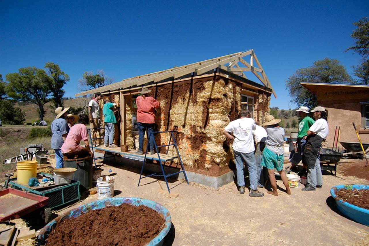Земляника садовая выращивание и уход после сбора урожая 45