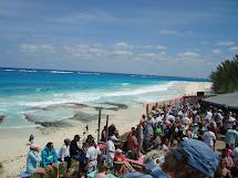 Rosie In Bahamas Scenes Of Great Guana Cay