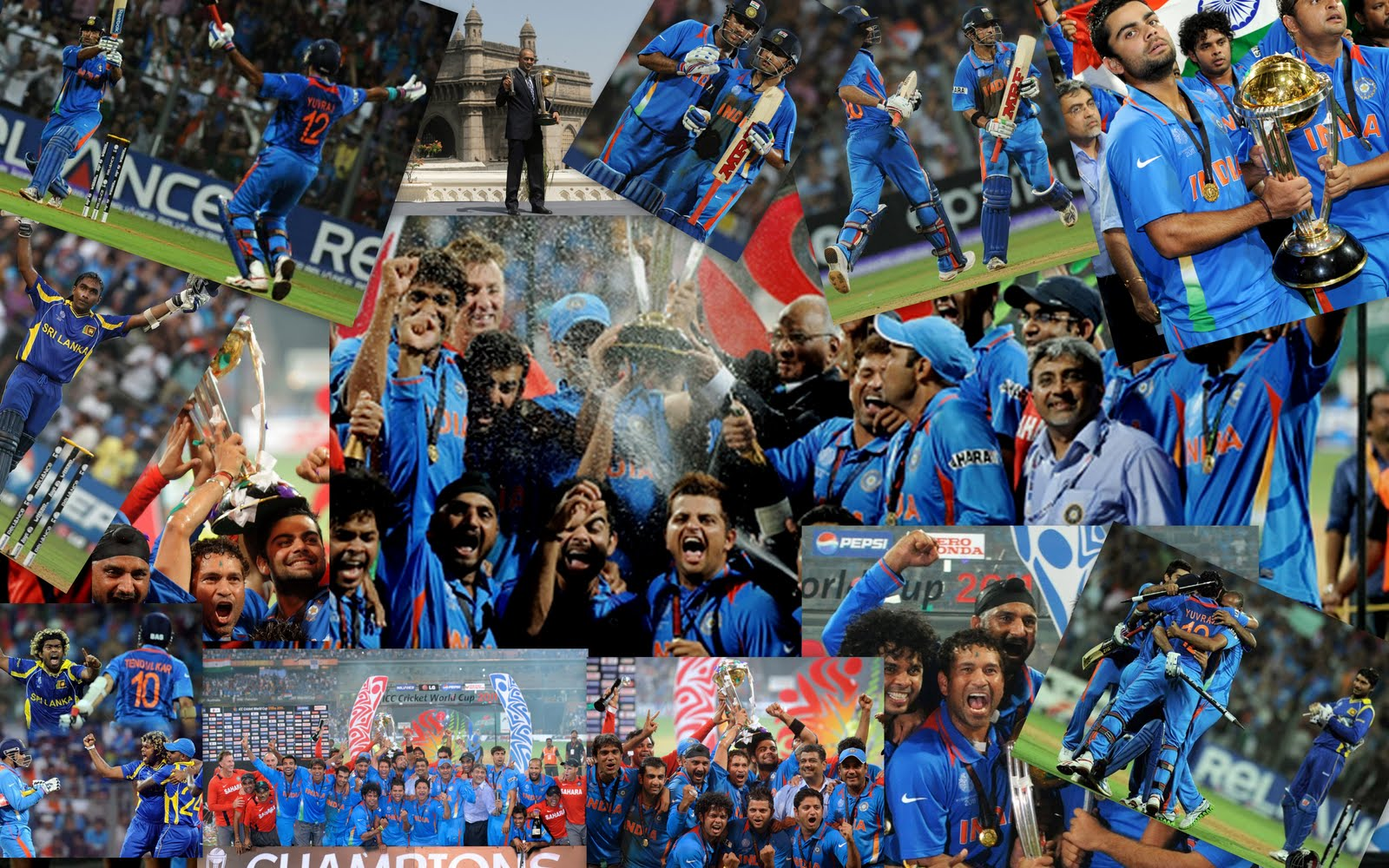 essay of world cup 2011 The 2011 icc cricket world cup was the tenth cricket world cup it was played in india, sri lanka, and for the first time bangladesh pakistan was also.