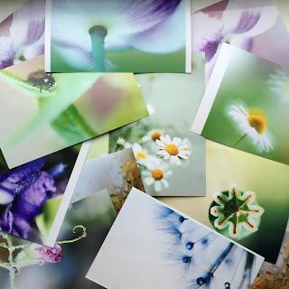открытки по фотографиям