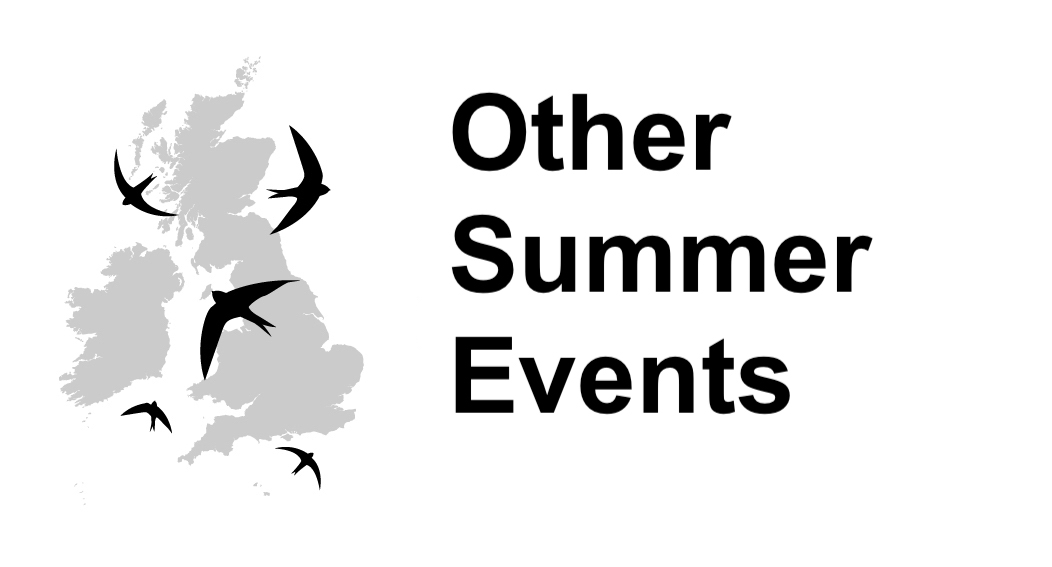 Other Summer Events