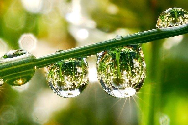 Muslim Pasif, Air Tenang Yang Mudah Tercemar