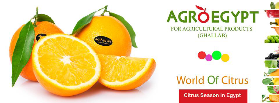 AGROEGPYT for Agricultural Products - GHALLAB