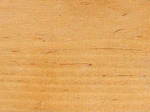 Marzua madera de abedul - Madera de abedul ...