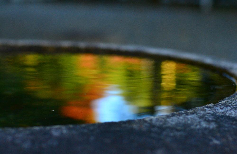水面に映った紅葉の写真