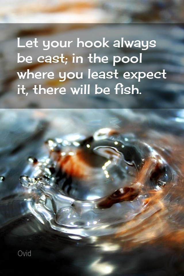 visual quote - image quotation for PROACTIVE - Let your hook be always cast; in the pool where you least expect it, there will be fish. - Ovid