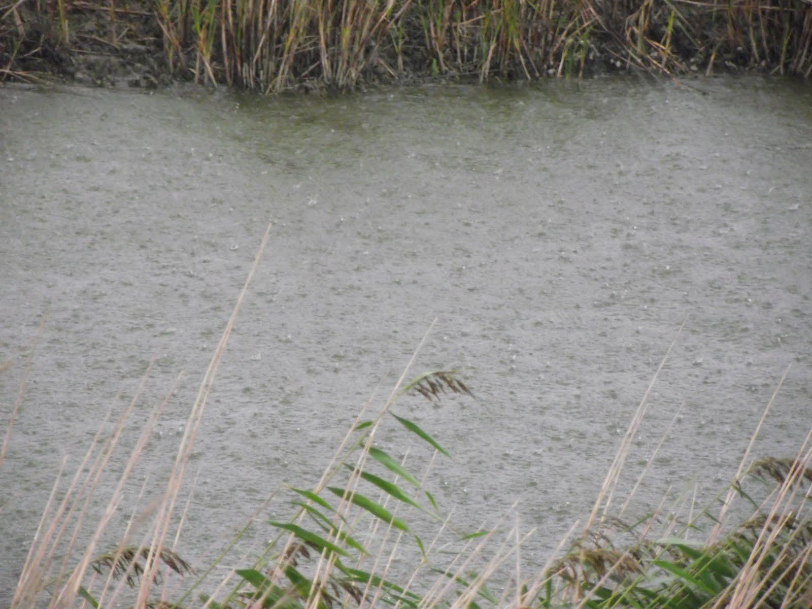 how to turn down rain pubg