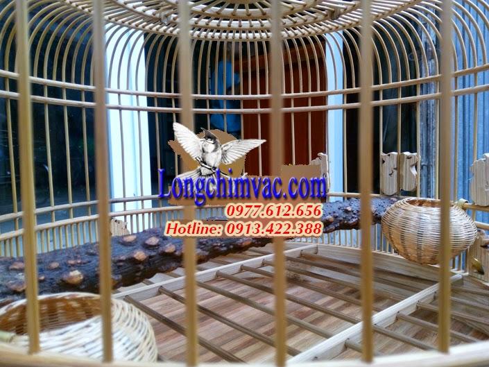 Lồng chim cu gáy tre già đục bầu bí đẹp CG022