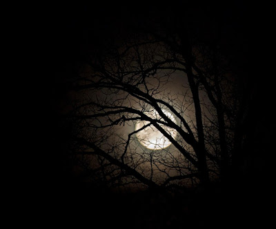 Supernal Love Creatrix: NATURAL TIME-KEEP: Full Moon Magick ~ 3/27/13