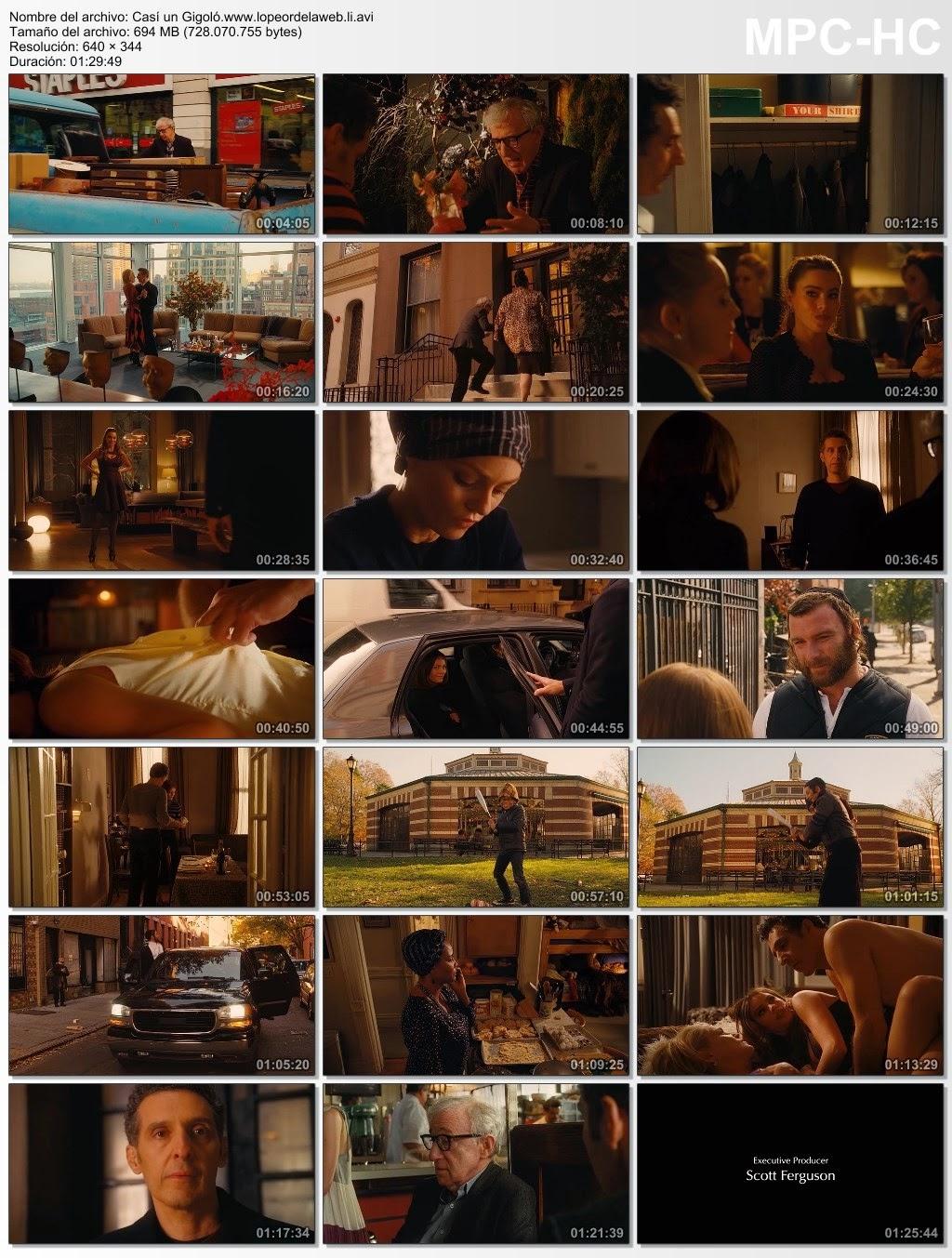 Casi un Gigoló (2013) DVDRip Latino