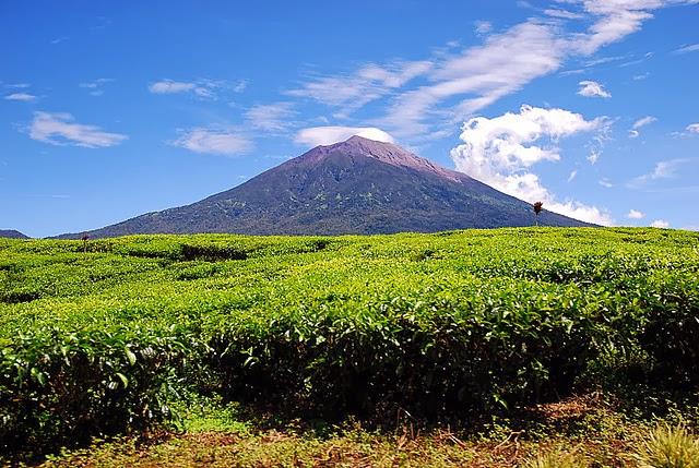 7 Gunung api tertinggi di Indonesia