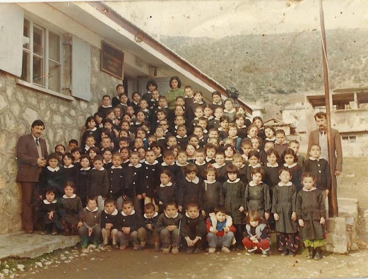Tatar Köyü İlkokulu 1984 mezunları