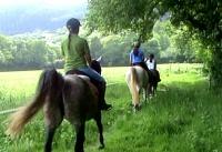 vacaciones con niños, turismo ecuestre, equino turismo