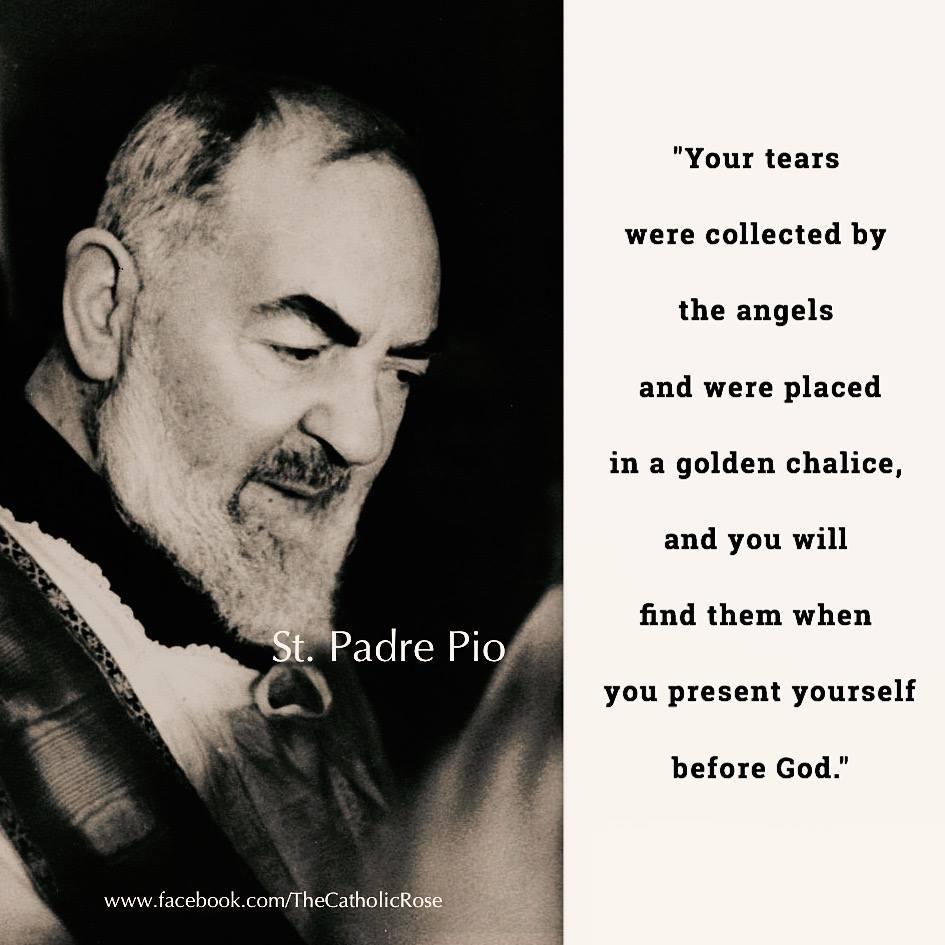 Saint Padre Pio NOS LARMES AU CIEL