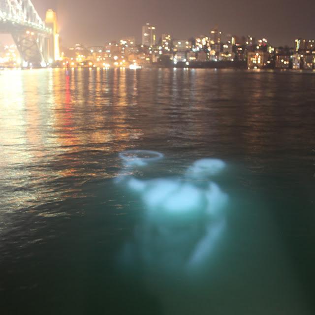 vivid sydney festival 2012 underwater sydney harbour