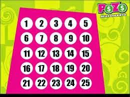 numeros ganadores sorteo pozo millonario