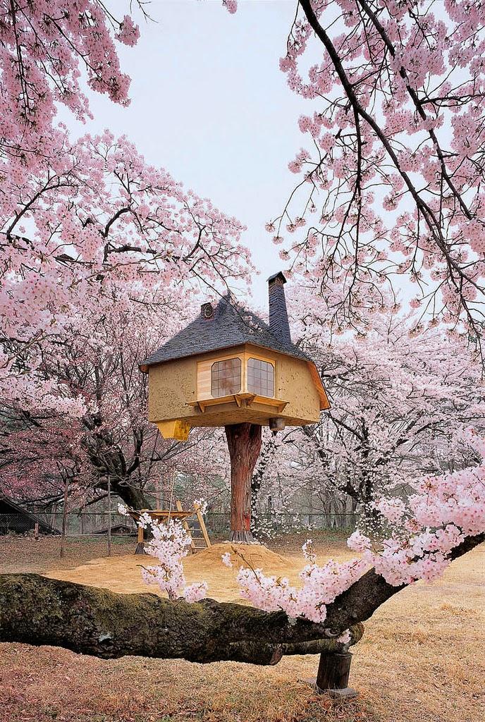 Allpe medio ambiente blog una casa de for Casa minimalista wikipedia