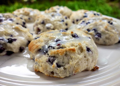 Homemade Blueberry Biscuit Recipe