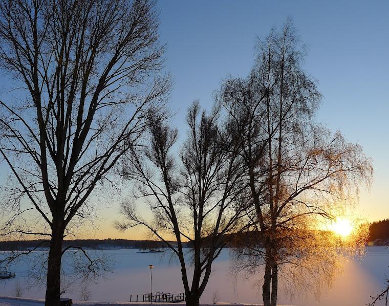 Lindesjön en vinterdag, januari 2012