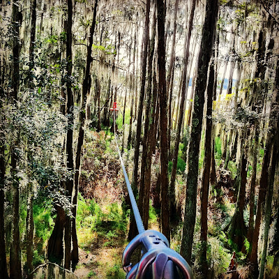 Tallahassee Tree-to-Tree Adventure