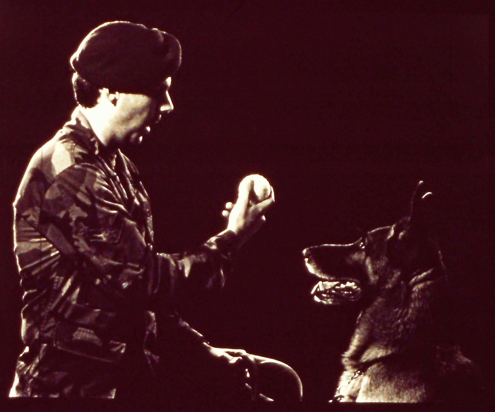 "A1C Eric Larson & Military Working Dog, ""Bo"""