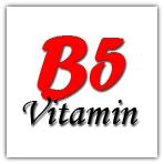 Fungsi vitamin B5 bagi tubuh