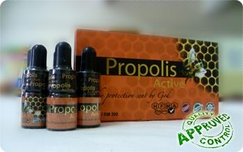 http://1.bp.blogspot.com/-2PSZe1PkGSY/UTqrVUaFqFI/AAAAAAAAEZg/IFkq4mVcjBM/s1600/propolis-active-box.jpg
