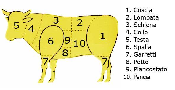 Malizia in cucina la carne bovina for Interno coscia grosso