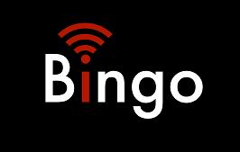 Bingo Studios