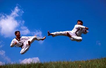 World taekwondo federation and olympic taekwondo tickets