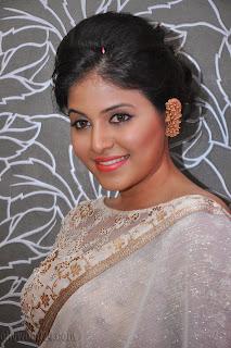 Anjali latest Glamorous pics in saree 016
