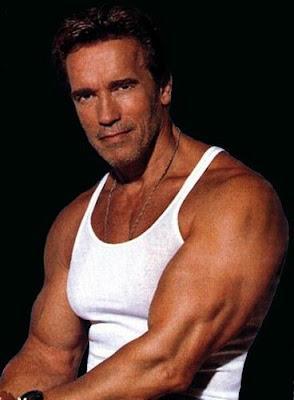 Arnold Schwarzeneggeren bibidí