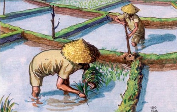 grandes civilizaciones fluviales: