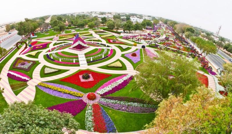 plantas para jardins umidos:CULTIVO A VIDA: Parque das Flores Emirados Árabes