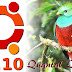 Download The Ubuntu 12.10 (Quantal Quetzal) Daily Build To Keep A Close Eye On Latest Developments