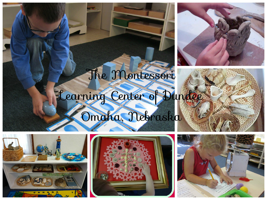 Inspired Montessori and Arts at Dundee Montessori