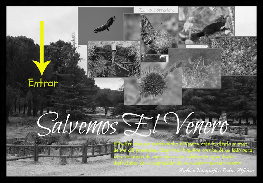 """Salvemos """"El Venero"""""""