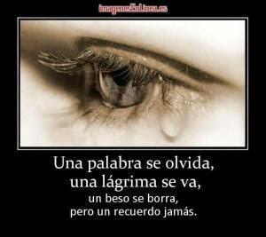 Una palabra se olvida, una lágrima se va, un beso se borra, pero tu recuerdo jamás.