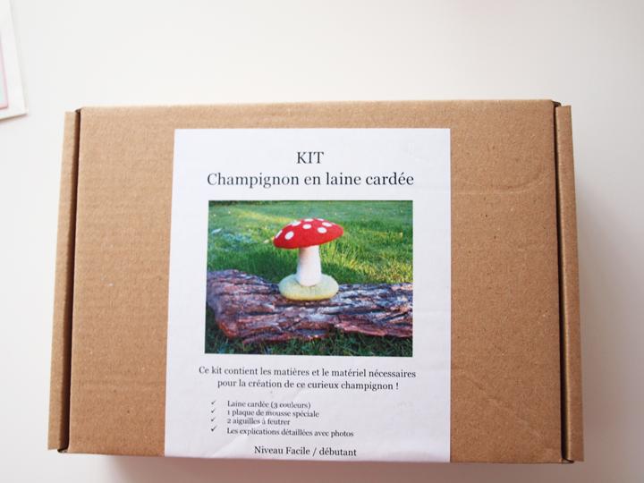 kit champignon laide cardée ô merveille