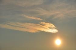 Einfach nur eine Sonne...