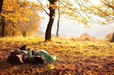 sonbaharda ne yapılır, sonbaharda yapılacaklar, sonbahar, son bahar, ilk bahar, mevsimler, kitap okumak, film izlemek, hobiler, cafecik, blog, öneriler