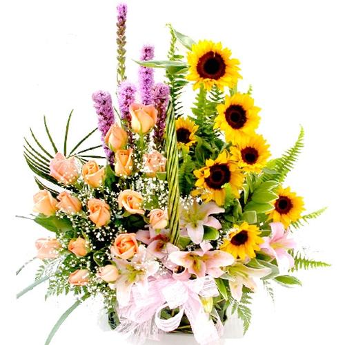 Những hình ảnh hoa 20-11 đẹp nhất